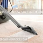 How to Get Mildew Smell Out of Carpet - Solution Guide