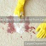 5 best ways to clean blood from carpet